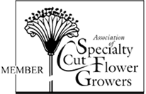 Member of Association of Specialty Cut Flower Growers